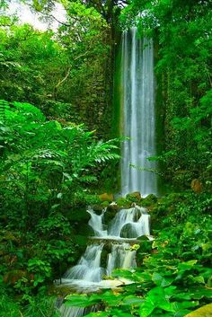 ✯ African Waterfall