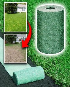 👉 Create Beautiful Grass in Just A Few Days!  Simply roll our  GatorGrass ™  Biodegradable Grass Seed Mat over your yard, and watch the nutrient-rich seed roll blossom in days! Our mat is designed to absorb water and is filled to the brim with fertile seed. Plant ANYWHERE and see healthy results, that naturally grow into the earth below. 🔥 CLICK THE LINK BELOW TO ORDER YOURS👈 Grass Seed Mat, Amazing Grass, Growing Grass, Garden Solutions, Planting Seeds, Planting Grass Seed, Outdoor Parties, Backyard Landscaping, Landscaping Ideas