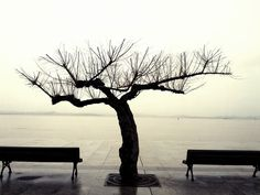 gone by Mario González on Costa, Outdoor Furniture, Outdoor Decor, Sculpture Art, Mario, Explore, Waiting, Spain, Wire