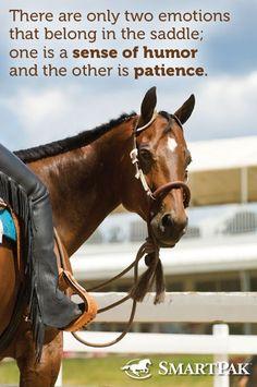 Horse - www.cowgirlblondie.com