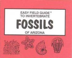 Easy Field Guide to Invertebrate Fossils of Arizona (Easy Field Guides) by B. J. Tegowski