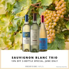 Fans of Sauv Blanc, rejoice! Have I got a trio for you! Enjoy this flight of Sauvignon Blanc at this special price through the end of June. Wine Club Monthly, Wine Tasting Experience, Food Gift Baskets, Napa Valley Wine, Wine Case, Growing Grapes, Personalized Wine, Sauvignon Blanc, Simple Pleasures