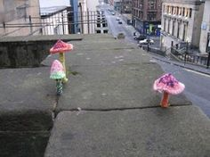 Some Knitted Mushrooms sprouting from a wall at Glasgow School of art. From an article about Yarn Bombing