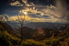 Photograph Canyon Sun by David  Garcia on 500px