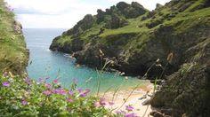 Gammon Head, South Devon, England