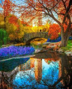 Superb Landscape & Nature Photography — Gapstow Bridge, Central Park, New York - by Hamdi. Fall Pictures, Nature Pictures, Pretty Pictures, Amazing Pictures, All Nature, Amazing Nature, Central Park New York, Beautiful World, Beautiful Places