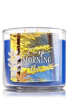 Crisp Morning Air 3-Wick Candle - Crisp Fall Breeze, White Oak, Golden Amber Wood, Saffron, Soft Sandalwood