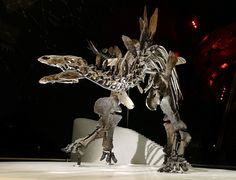 A stunning stegosaurus the size of an SUV could soon steal the limelight from the famous diplodocus at the entrance of London's Natural History Museum