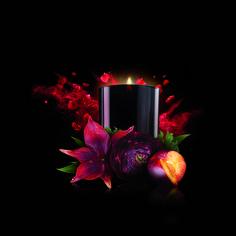 Desire: Eine betörende, blumige Begegnung in enger Verbundenheit zu schwarzen Pflaumen und Johannisbeeren. / Desire: L'émoustillante liaison entre des notes florales, des prunes et du cassis.