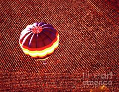 Aerial Over Corn Field 455300091 Hot Air Ballon Photograph by Tom Jelen