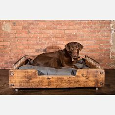 "For the Dog who has everything, including an extremely wealthy owner whose biggest problem is "" When am I going to get my own reality show? People NEED to know more about how fabulous I am."" Dog Bed now featured on Fab."