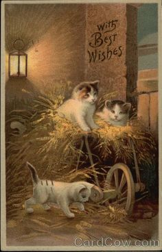 "Vintage Greeting Card of 3 Kittens playing in the hay  ""With Best Wishes"""