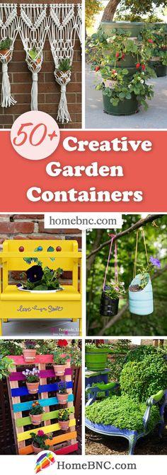 Creative Garden Container Ideas Garden Container, Creative, Garden Design, Cool Designs, Walkway, Unique, Ranch, Garden Ideas, Plants