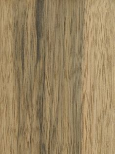 Black Limba Wood Types, Bungalow Renovation, Woodworking Desk, Petrified Wood, Stain Colors, Wood Texture, Building Materials, Wood Species, Textures Patterns