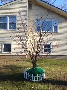 Tree much bigger, was able to put golf ball sized Christmas Balls on it this year. It looks nice. I Love you Mom <3