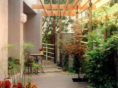 Urban side yard.  Filtered light plus privacy.
