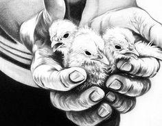 Chickens Print By Natasha Denger