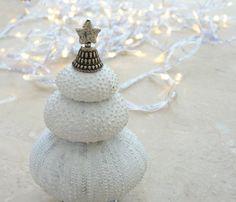 Sea Urchin Christmas Tree