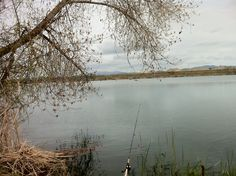 1000 images about places i fish or would like to on for Lake tulloch fishing