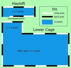 guinea pig c&c cage ideas | Cage Specifications: Building a C&C Cage