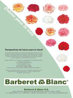 Anuncio 1/1  Barberet&Blanc