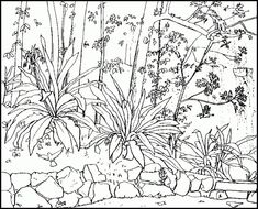 free printable nature coloring pages for adults | Nature Coloring ...