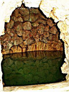 fuente (mallorca)