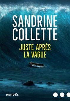 Juste après la vague de Sandrine Collette https://www.amazon.fr/dp/2207140687/ref=cm_sw_r_pi_dp_U_x_vn6zAbH5A2TYR