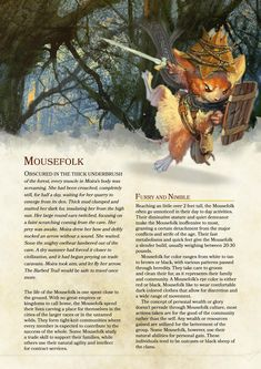 Homebrew Mousefolk Race 5e by Redditor SkyBug12