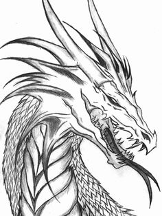 Chinese Dragon Coloring Sheets Lovely Coloring Book Ideas Realistic Dragon Coloring Pages New Year Coloring Pages, Animal Coloring Pages, Coloring Sheets, Coloring Books, Realistic Dragon Drawing, Dragon Head Drawing, Dragon Drawings, Blue Jurassic World, Dragon Coloring Page