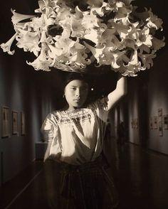 """Soy el que pese a ilustres modos de errar, no ha descifrado el laberinto singular y plural, arduo y distinto, del tiempo, que es de uno y de todos. Soy el que es nadie, el que no fue una espada en la guerra. Soy eco, olvido, nada. (Jorge Luis Borges, """"Soy"""") ° ° ° ° ° ° ° #mexico���� #oaxaca #photography  #igers #vsco #mexicoantiguo  #followforfollow  #instagirl #culture #flowers http://tipsrazzi.com/ipost/1513511506620071031/?code=BUBErJDjjx3"""