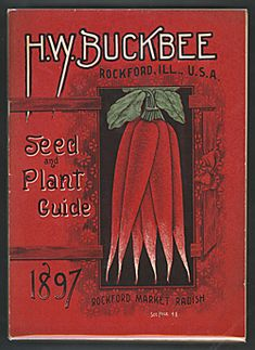 Catalog Information:  Company Name:  H.W. Buckbee.   Catalog Title:  Seed and Plant Guide (1897).  Publication Information:  Rockford, IL, USA.   Catagory(ies) of  Cover Art:  Radishes.   Smithsonian Institution Libraries Catalog Number:  00030