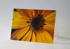 Ray of Sunshine Sunflower Stationery  12 by karlinmeehanstudios, $25.00