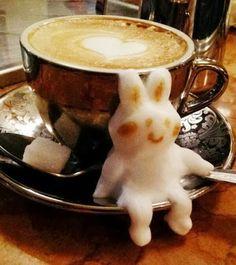 l'arte del cappuccino  Daniella