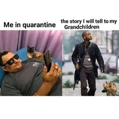 Today's Morning Mega Memes Lol Memes, Stupid Funny Memes, Funny Relatable Memes, Haha Funny, Funny Cute, True Memes, Funny Stuff, Hahaha Joker, Memes Do Facebook