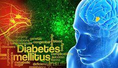Glucose Sensor in Brain Discovered: Controlling Blood-Sugar Level