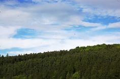 Forest Mountain, Sky, Fine Art, Mountains, Landscape, World, Painting, Travel, Heaven