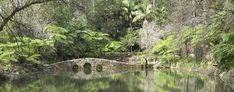 Tamborine Mountain Botanical Gardens