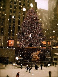 I just want to go to New York for Christmas with someone I love. Although it's great to spend Christmas Day with family it's just been a dream of mine. Hopefully one day.