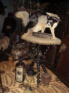 Gothic Black Taxidermy Crow