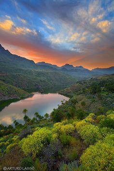 Los colores de Canarias y su rica vegetación - Foto de Arturo Lasso