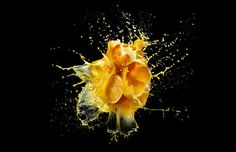 Illusion: The beautiful high-speed photography of Peter Schafrick.    (Image © Schafrick)    http://illusion.scene360.com/art/31738/fruit-flower-and-water-explosions/