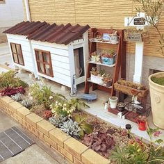 女性で、の室外機カバーDIY/オンデュリン/多肉寄せ植え/道路沿いガーデン/クリスマスローズ…などについてのインテリア実例を紹介。「去年の秋に植え替えして寂しかった花壇ですが、 2種類のクリスマスローズが花を咲かせてます^_^」(この写真は 2017-03-24 16:24:33 に共有されました) Small Gardens, Outdoor Gardens, Kids Cubby Houses, Playground Flooring, Small Outdoor Spaces, Inside Plants, Cute House, Garden Landscape Design, Garden Structures