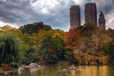 An older couple rowing in Central Park while newly weds pose for pictures.