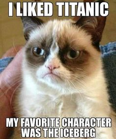Grumpy Cat IS always amazing - credit to: swipurr.com More