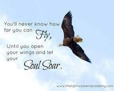 Soaring with Wings