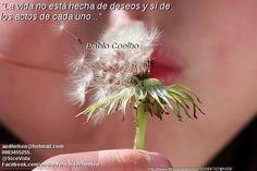 """""""La vida no está hecha de deseos y sí de los actos de cada uno..."""" Paulo Coelho"""