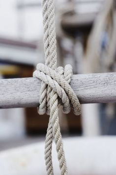 :: knot ::