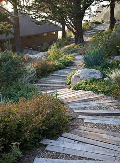 Snake path with old sleepers