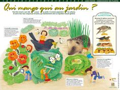 Les jardi-posters pour présenter aux élèves les activités de jardinage